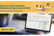 REGISTRO DE NECESIDADES EDUCATIVAS ESPECIALES (R-NEE)
