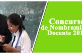 "COMUNICADO CONCURSO DE INGRESO A LA CARRERA PÚBLICA MAGISTERIAL – I.E.S.T.I. ""PERÚ BIRF"" – JULI"