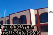 RESULTADOS PRELIMINARES DEL PROCESO DE ENCARGATURA DE CARGOS DIRECTIVOS 2019. ETAPA I